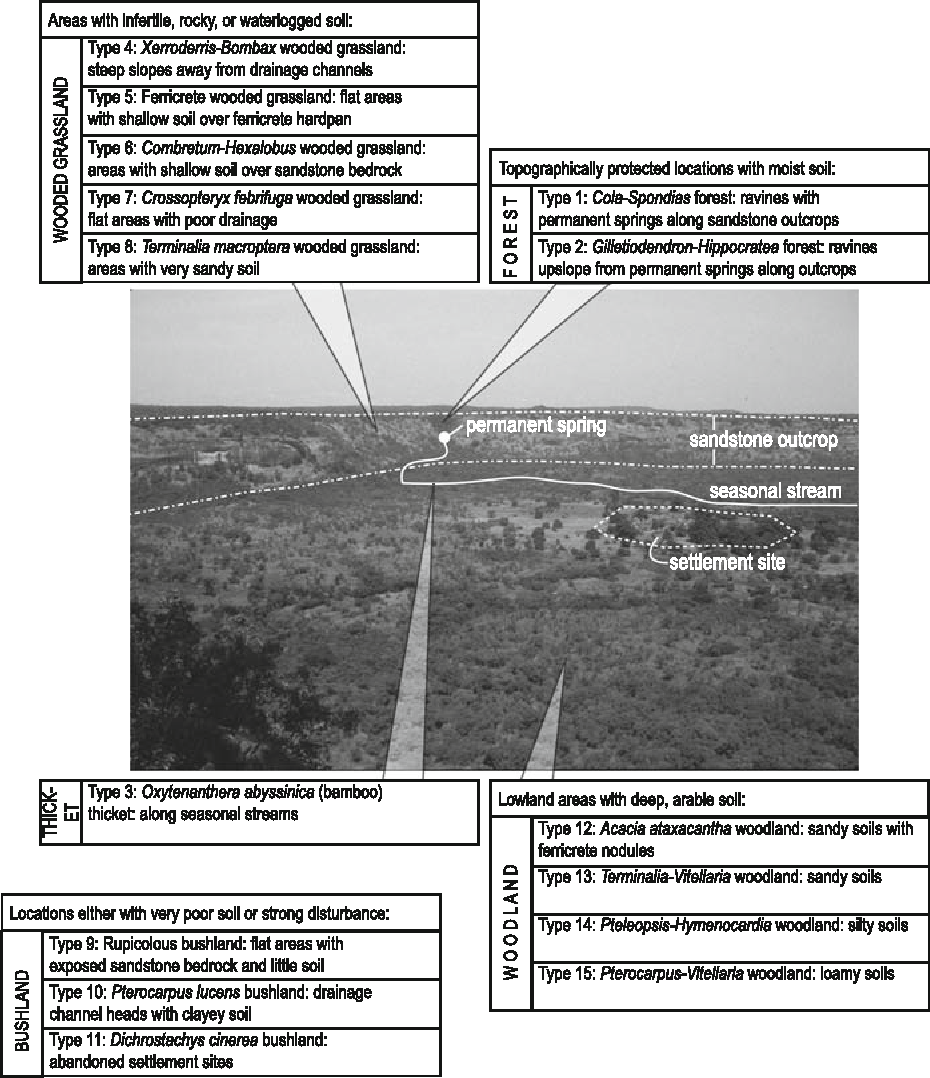 Settlement: a selection of sites