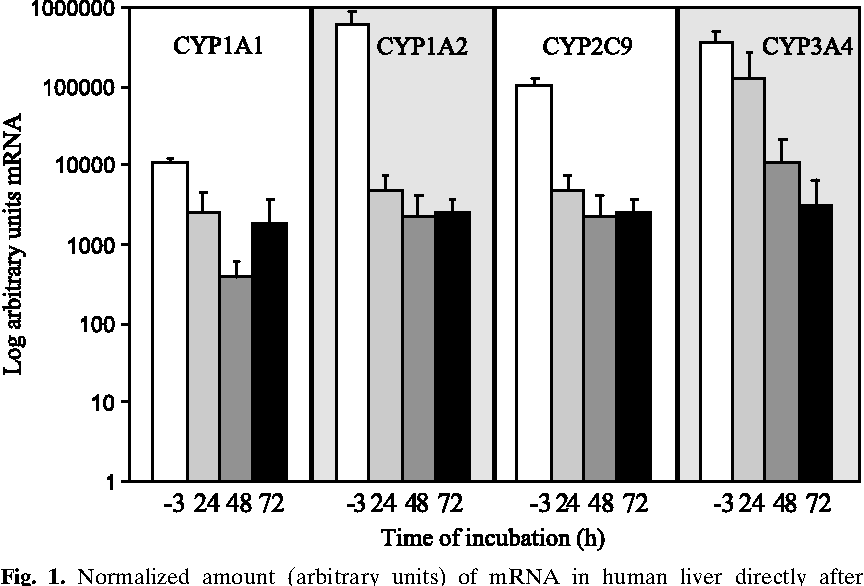 Fig. 1. Normalized amount (arbitrary units) of mRNA in human liver directly after resection (time = j3 h) and in human liver slices after incubation with control media for 24, 48, and 72 h. Values are mean T SD from three individual livers.