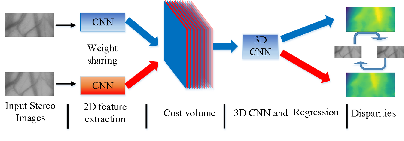 Figure 1 for Non-destructive three-dimensional measurement of hand vein based on self-supervised network
