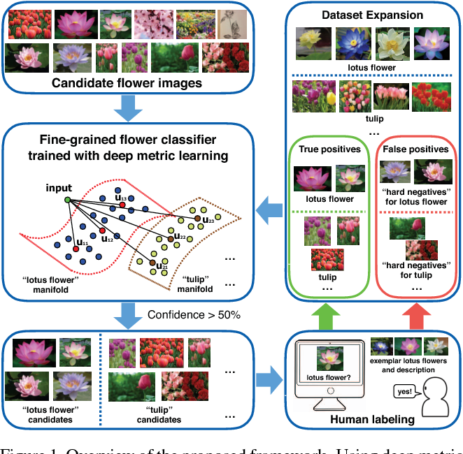 Figure 1 for Fine-grained Categorization and Dataset Bootstrapping using Deep Metric Learning with Humans in the Loop