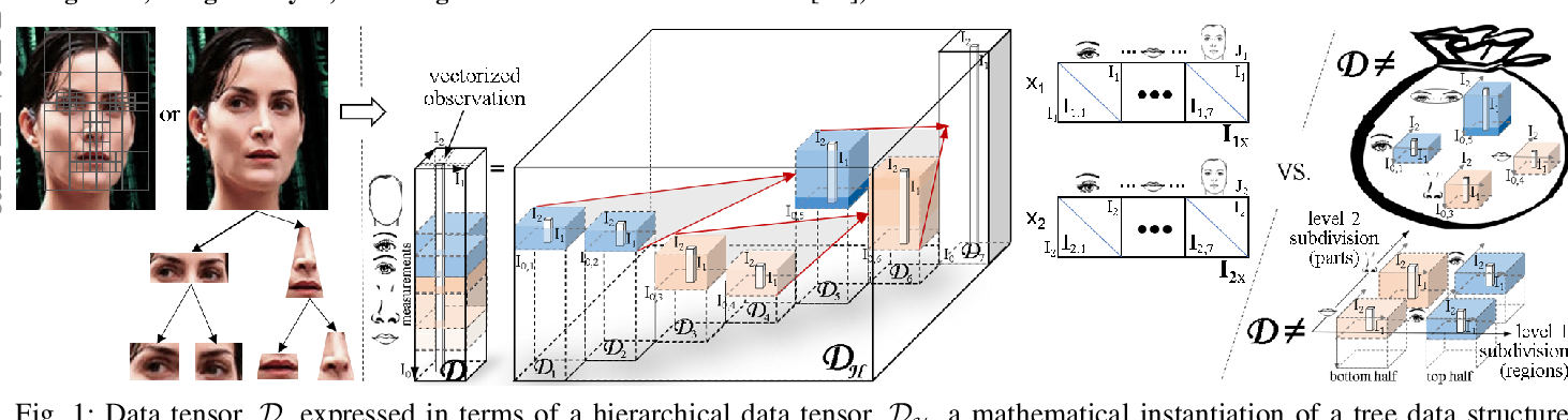 Figure 1 for CausalX: Causal Explanations and Block Multilinear Factor Analysis