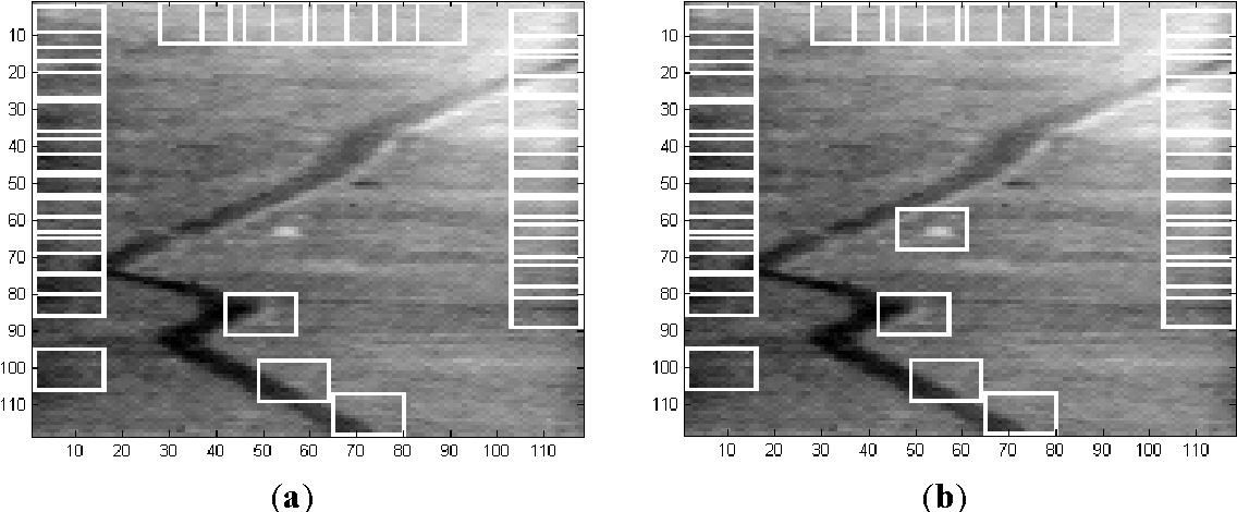 Figure 7. (a) 32 ROIs in Frame 1 of Sequence L2018; and (b) 33 ROIs in Frame 1 of Sequence L2018.