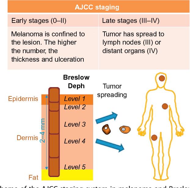 Circulating biomarkers in malignant melanoma  - Semantic Scholar