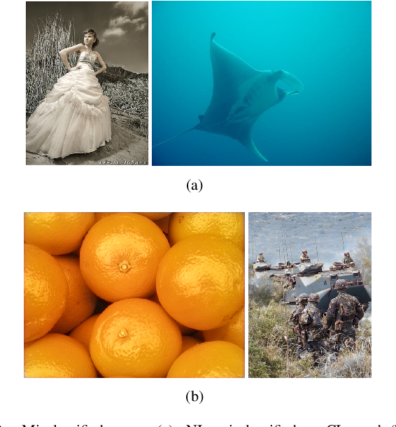 Figure 2 for Detecting Colorized Images via Convolutional Neural Networks: Toward High Accuracy and Good Generalization