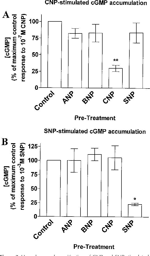 Figure 3 from C-type natriuretic peptide (CNP) effects in