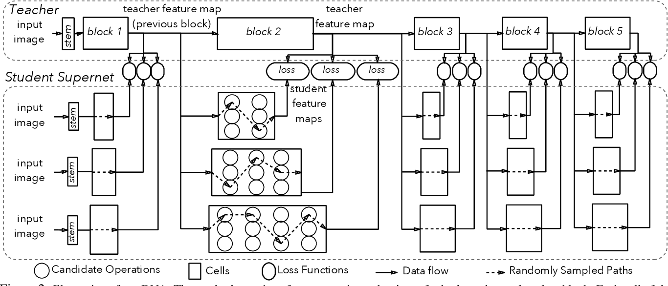 Figure 3 for Blockwisely Supervised Neural Architecture Search with Knowledge Distillation
