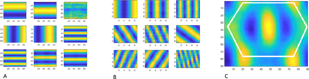 Figure 3 for A computational model for grid maps in neural populations