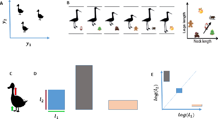 Figure 4 for A computational model for grid maps in neural populations