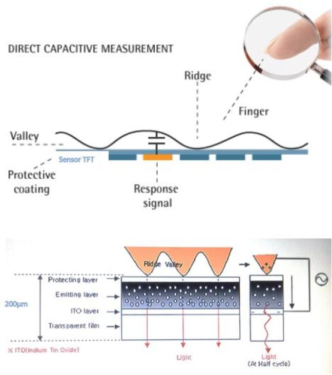 A Dual System Capture Biometric Fingerprint Scanner