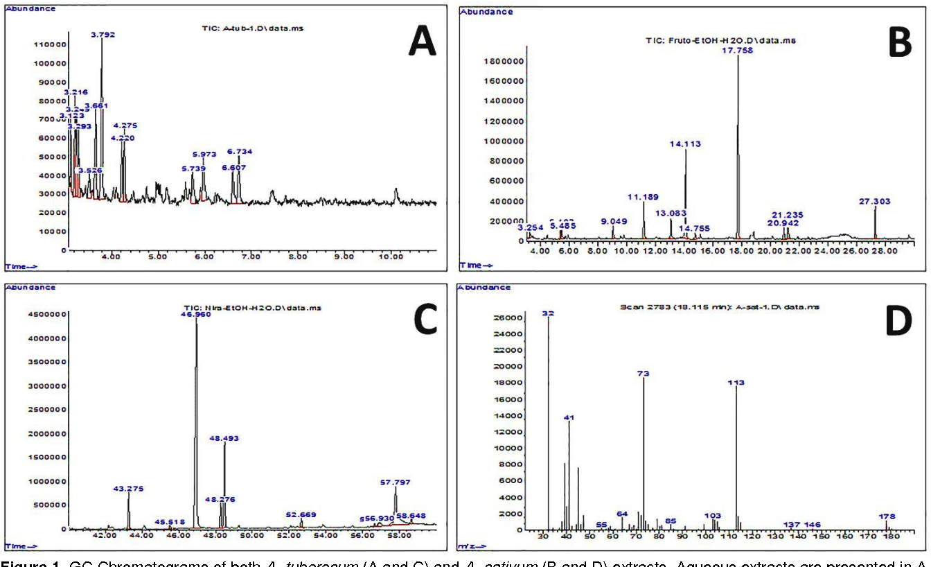 Figure 1 from Antimicrobial Activity of Two Garlic Species (Allium