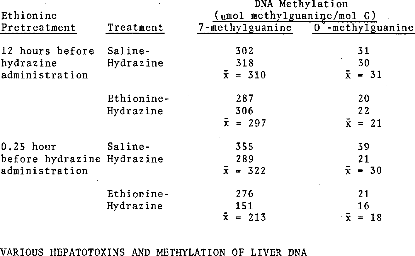 TABLE 8. EFFECT OF ETHIONINE ON THE METHYLATION OF LIVER DNA IN RATS GIVEN HYDRAZINE