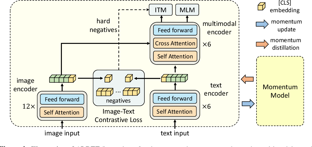 Figure 1 for Align before Fuse: Vision and Language Representation Learning with Momentum Distillation