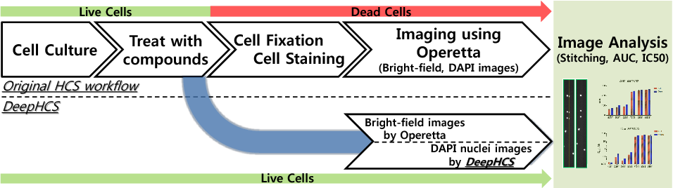 Figure 1 from DeepHCS: Bright-Field to Fluorescence Microscopy Image