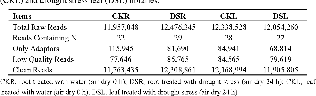 Table 1. Illumina sequencing reads in CK root (CKR), drought stress root (DSR), CK leaf (CKL) and drought stress leaf (DSL) libraries.