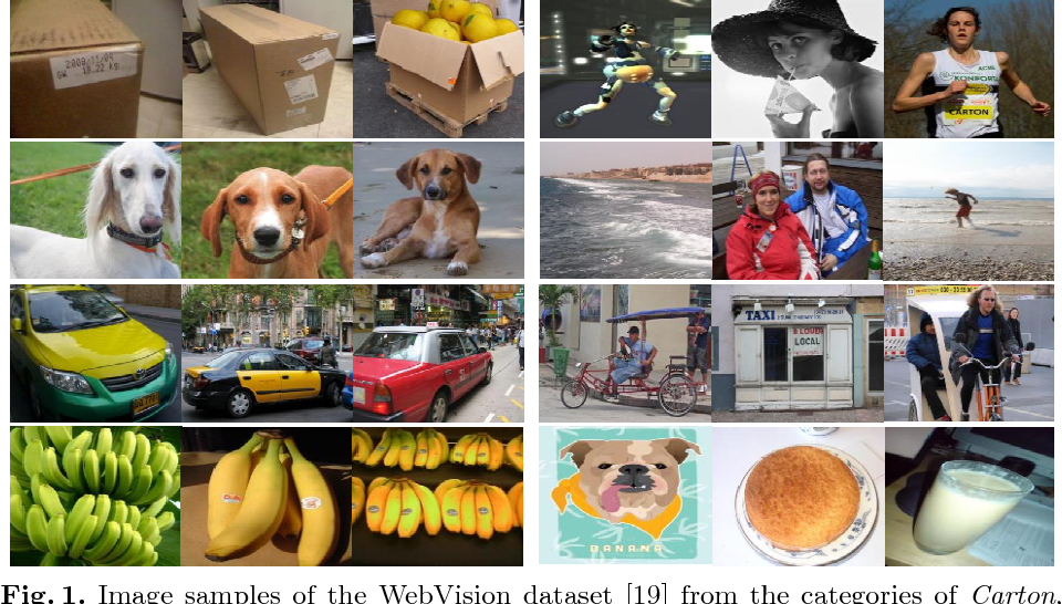 Figure 1 for CurriculumNet: Weakly Supervised Learning from Large-Scale Web Images