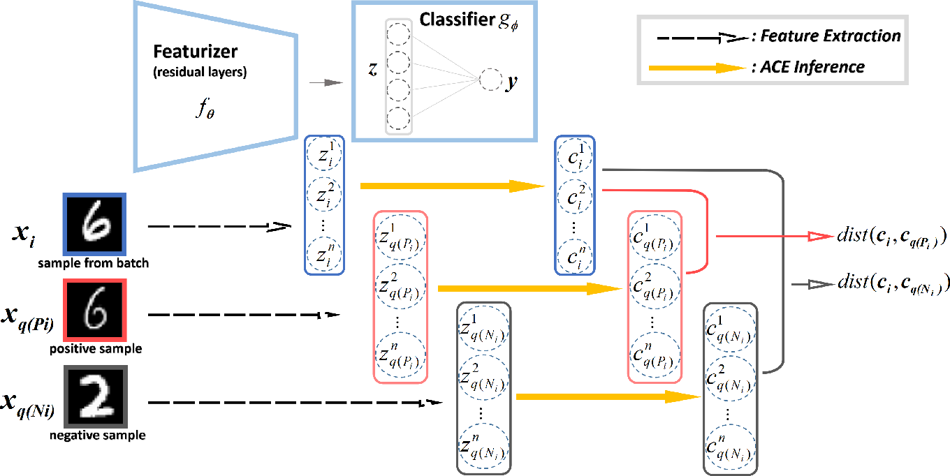 Figure 1 for Contrastive ACE: Domain Generalization Through Alignment of Causal Mechanisms