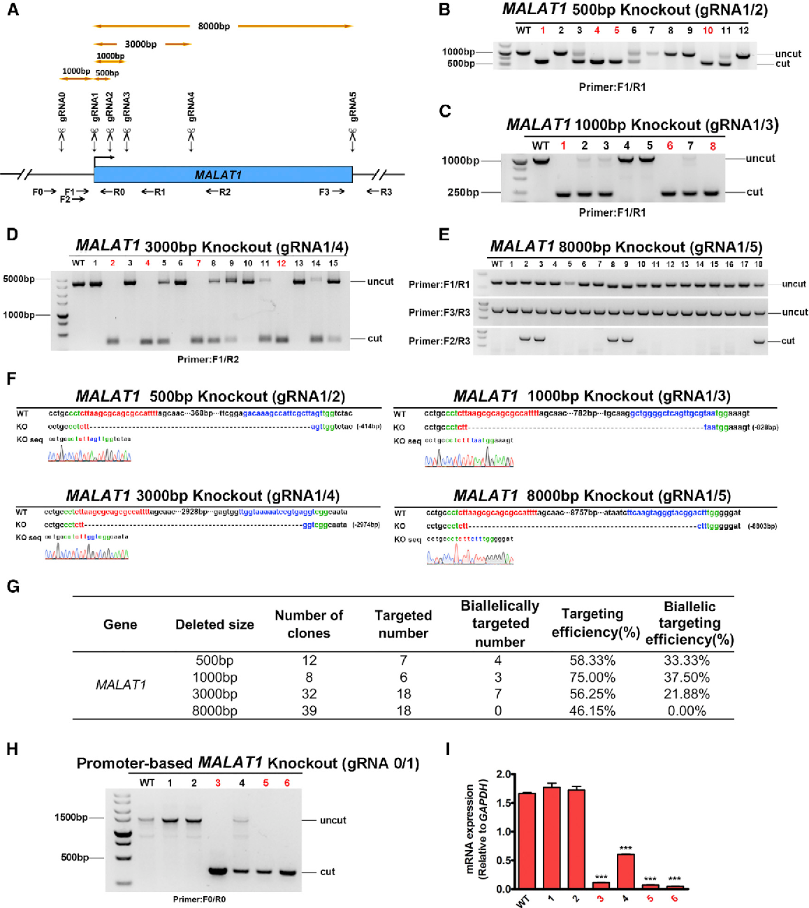 Figure 5 from Efficient CRISPR/Cas9-Mediated Versatile, Predictable