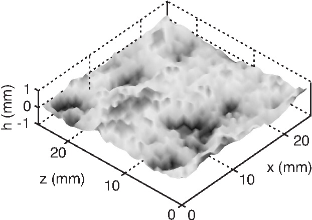 FIG. 2: Topographic image (248 × 252 pixels) of a fractured sandstone surface with a crack propagation along the x-axis. Sample width: W = 26 mm (along the z-axis).