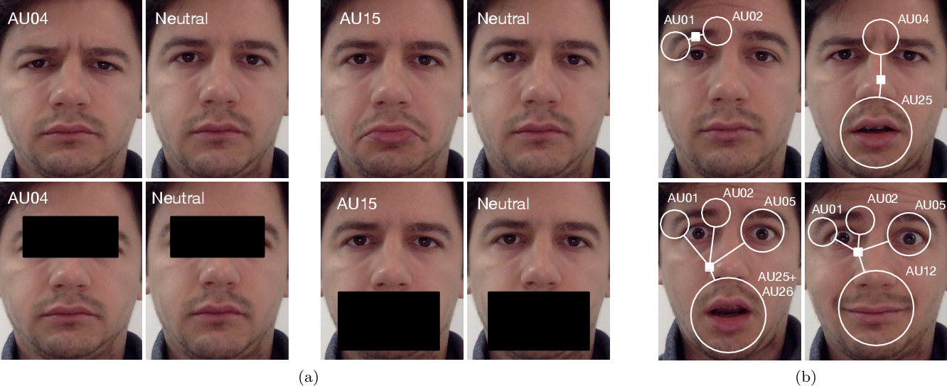 Figure 1 for Deep Structure Inference Network for Facial Action Unit Recognition