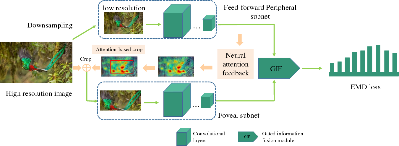 Figure 2 for A Gated Peripheral-Foveal Convolutional Neural Network for Unified Image Aesthetic Prediction