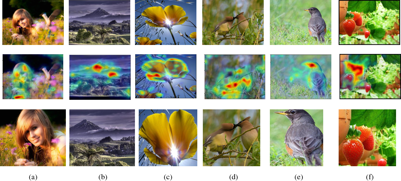 Figure 4 for A Gated Peripheral-Foveal Convolutional Neural Network for Unified Image Aesthetic Prediction