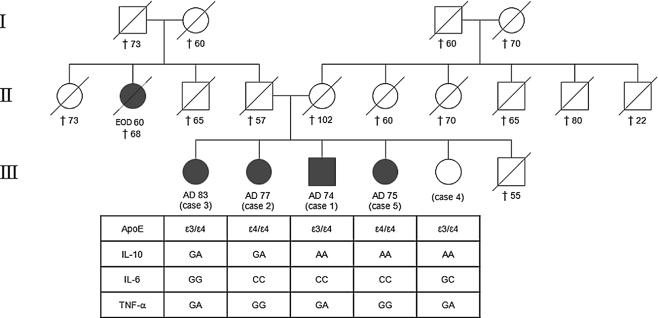 Figure 1 From Familial Late Onset Alzheimers Disease Description