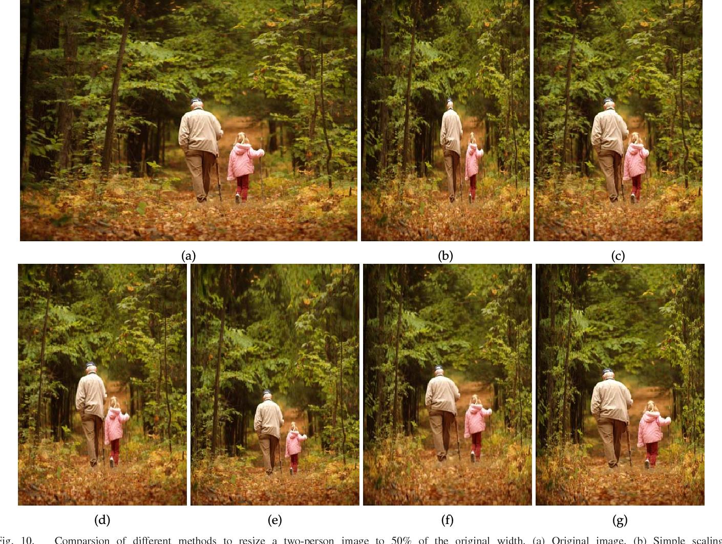 Figure 2 for Image retargeting via Beltrami representation