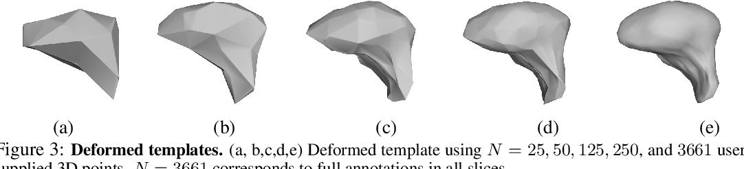 Figure 4 for Weakly Supervised Volumetric Image Segmentation with Deformed Templates