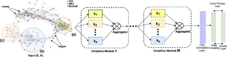 Figure 1 for InceptionGCN: Receptive Field Aware Graph Convolutional Network for Disease Prediction
