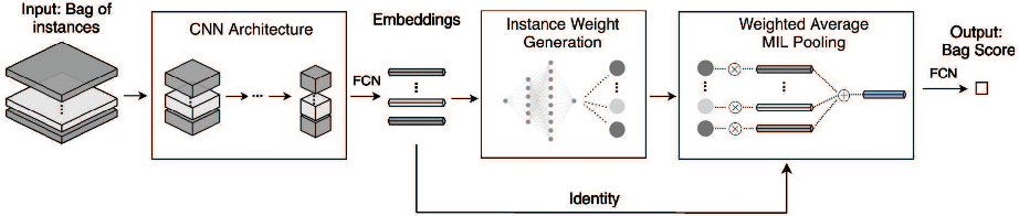 Figure 1 for Deep Instance-Level Hard Negative Mining Model for Histopathology Images
