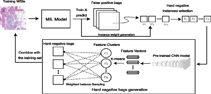 Figure 3 for Deep Instance-Level Hard Negative Mining Model for Histopathology Images