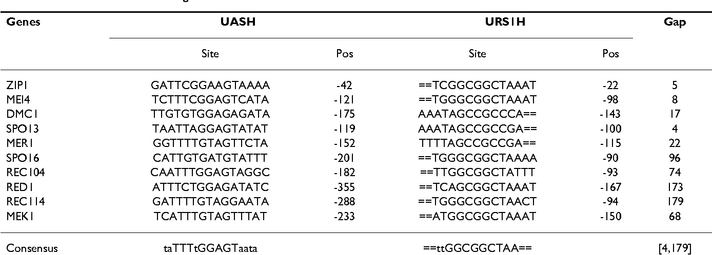 Table 6: UASH and URS1H binding sites.