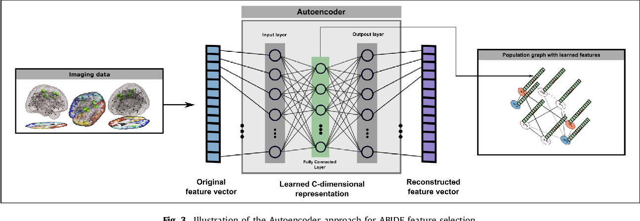Figure 3 for Disease Prediction using Graph Convolutional Networks: Application to Autism Spectrum Disorder and Alzheimer's Disease
