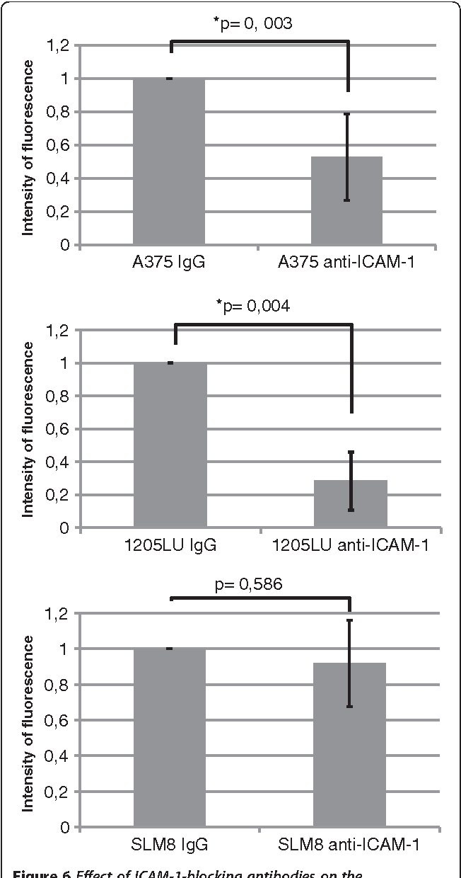 Figure 6 Effect of ICAM-1-blocking antibodies on the transendothelial migration of A375, 1205LU and SLM8 cell lines. The experiments were performed as detailed in Figure 1, except that 2μg/ml of ICAM-1-blocking antibodies were introduced in the upper chamber of the Transwell when indicated. Histograms represent 3 independent experiments. In each experiment each condition was analyzed in duplicate.
