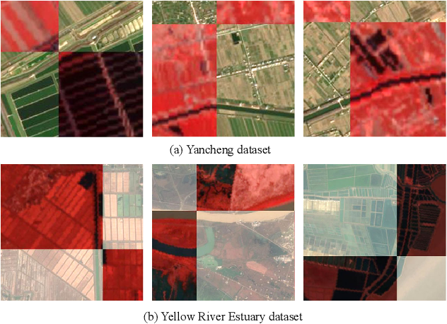 Figure 2 for Hyperspectral and Multispectral Classification for Coastal Wetland Using Depthwise Feature Interaction Network