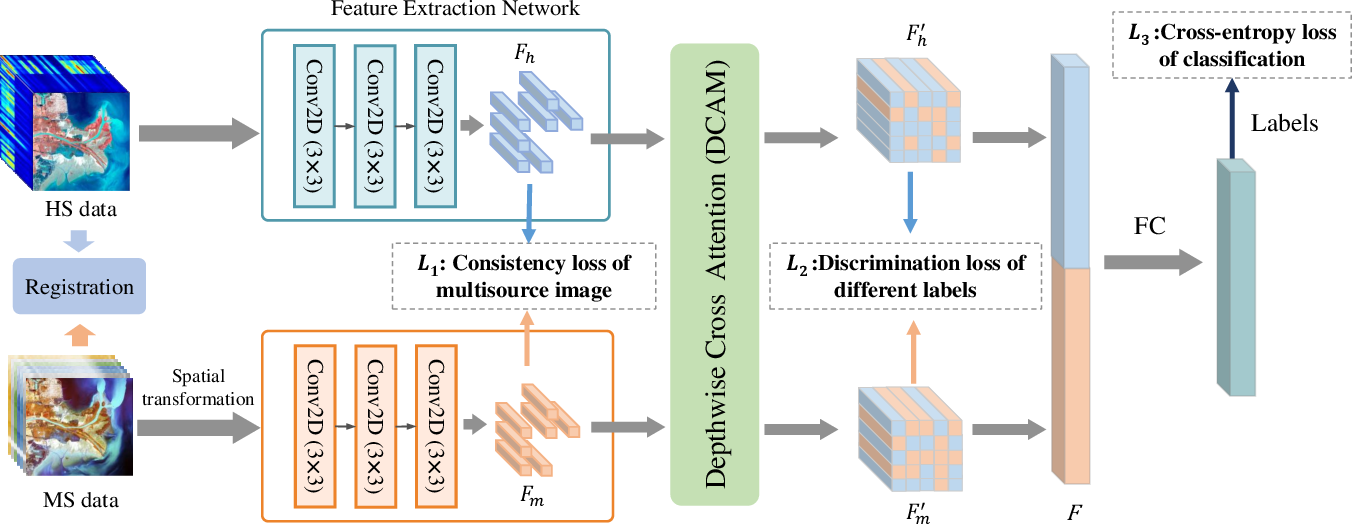 Figure 1 for Hyperspectral and Multispectral Classification for Coastal Wetland Using Depthwise Feature Interaction Network