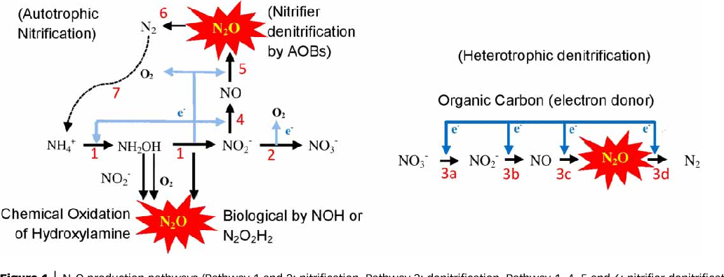 Figure 1 from Correlation between nitrous oxide (N2O) emission and
