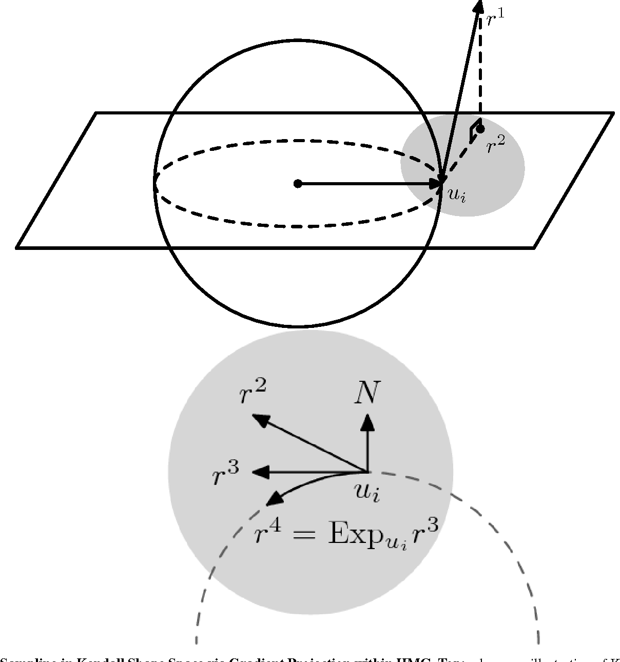 Figure 2 for Hierarchical Graphical Models for Multigroup Shape Analysis using Expectation Maximization with Sampling in Kendall's Shape Space