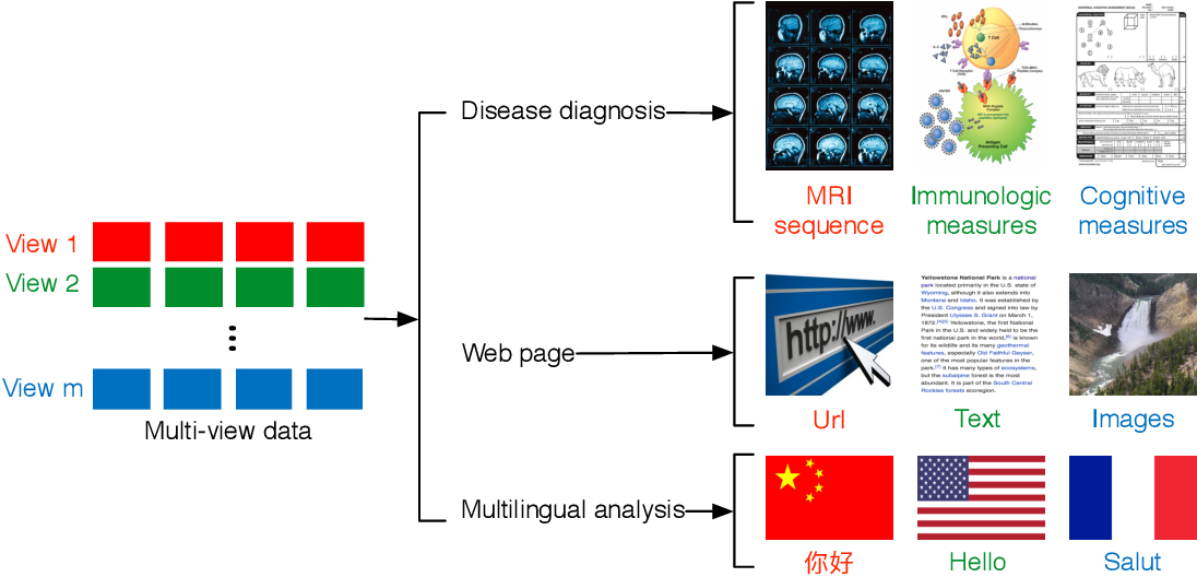 Figure 1 for Multi-view Unsupervised Feature Selection by Cross-diffused Matrix Alignment