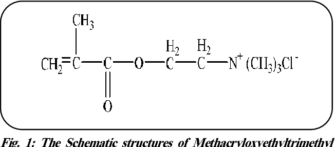 Grafting Copolymerization of Cationic Vinyl Monomer with