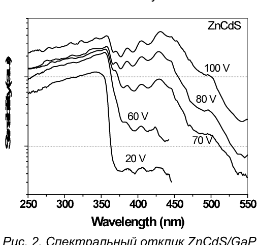 Fig. 2. Spectral response of ZnCdS/GaP MSM-diode