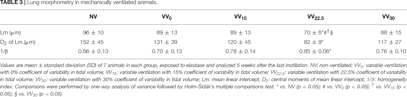 TABLE 3 | Lung morphometry in mechanically ventilated animals.