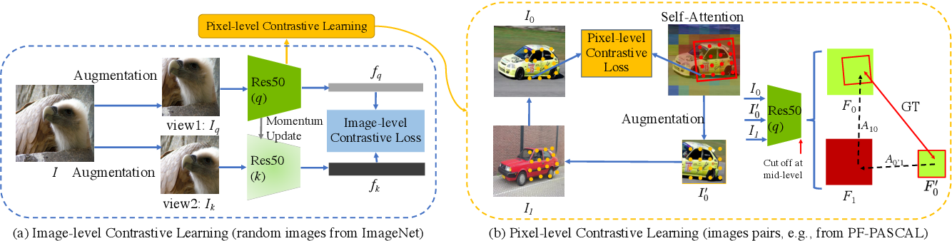Figure 3 for Learning Contrastive Representation for Semantic Correspondence