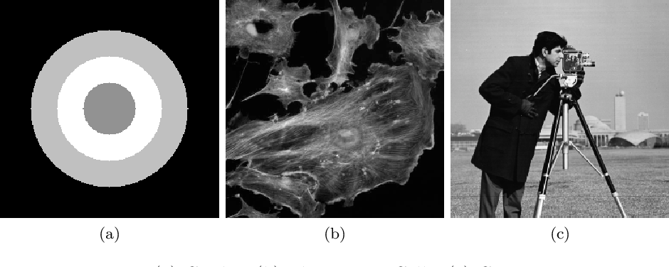 Figure 1 for Bilinear Constraint based ADMM for Mixed Poisson-Gaussian Noise Removal