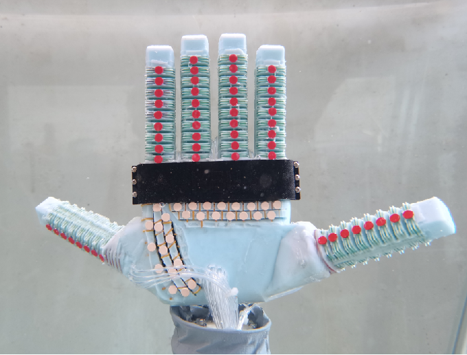 Figure 1 for Underwater Soft Robotic Hand with Multi-Source Coupling Bio-Inspired Soft Palm and Six Fingers Driven by Water Hydraulic