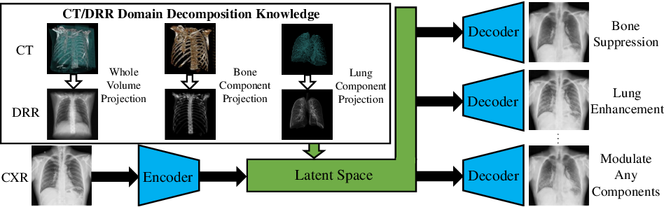 Figure 1 for Encoding CT Anatomy Knowledge for Unpaired Chest X-ray Image Decomposition