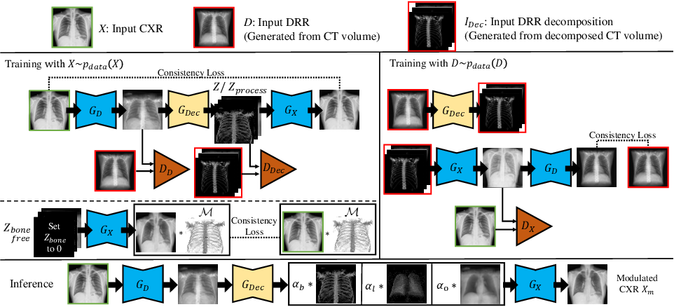 Figure 3 for Encoding CT Anatomy Knowledge for Unpaired Chest X-ray Image Decomposition