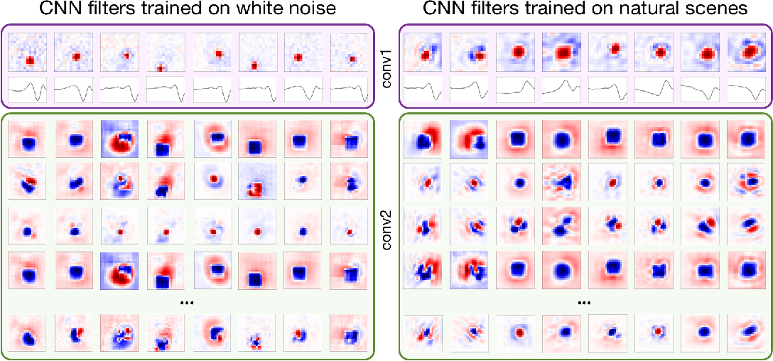 Figure 3 for Deep Learning Models of the Retinal Response to Natural Scenes