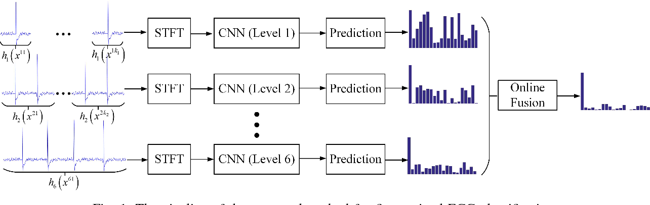 Figure 1 for Fine-grained ECG Classification Based on Deep CNN and Online Decision Fusion