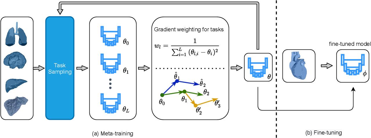 Figure 1 for MetaMedSeg: Volumetric Meta-learning for Few-Shot Organ Segmentation